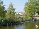 /ogv/img/pix/2008_Gartenschau/DSC03706.jpg