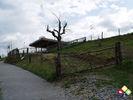 /ogv/img/pix/2009_Gartenschau/DSC05219.JPG