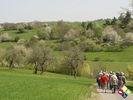 /ogv/img/pix/2010_Bluetenwanderung/DSC05867.JPG