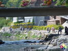 /ogv/img/pix/2011_Gartenschau_Horb/DSC08711.JPG